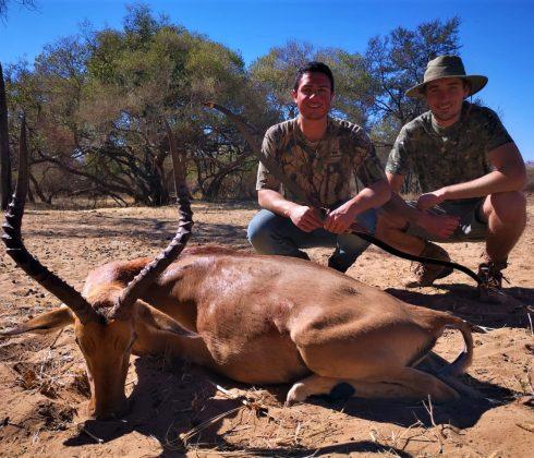 Impala cazado con arco tradicional